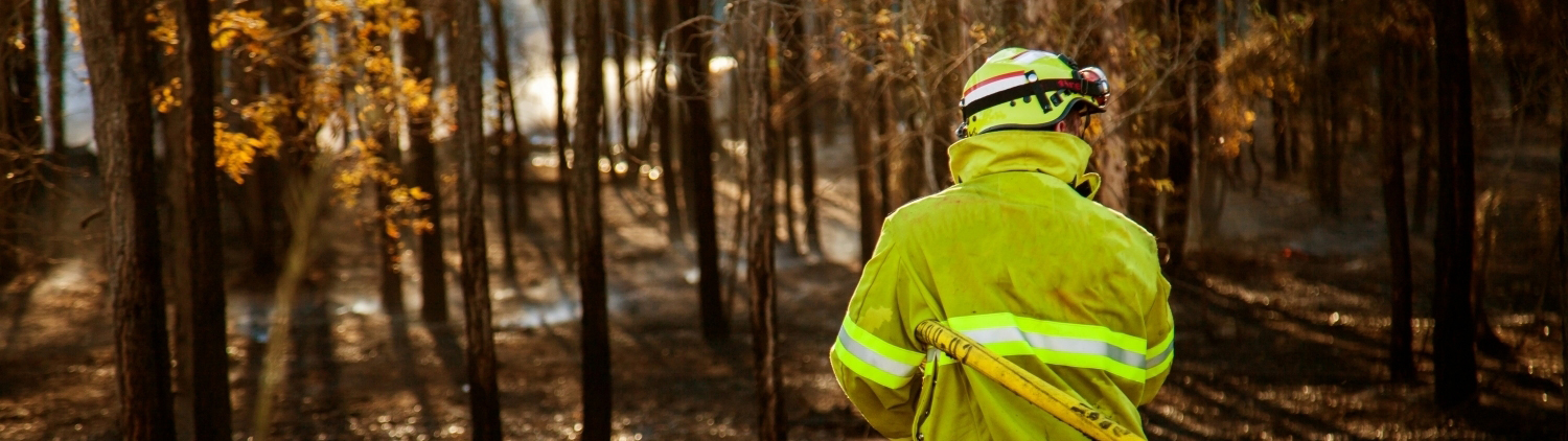 Bushfires and mental health